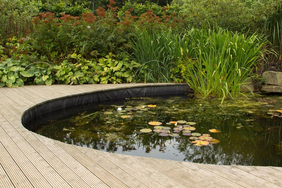 Gartenteiche und schwimmteiche auf dem eigenen grundst ck for Garten teiche